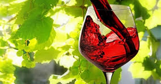 a vörösbor magas vérnyomásának előnyei)